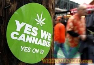 yeswecannabis-sticker-prop19