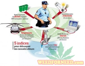 Illustration from the French police describing the main 5 evidences to catch growers