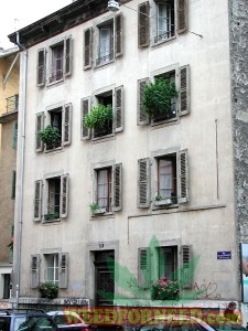 Cannabis growing on balconies in Geneva in 2008